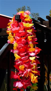 Leis for guests